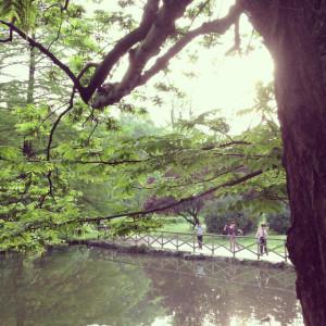 foto blog 30 jen8
